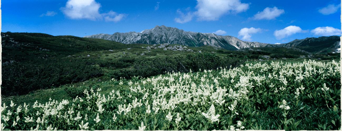 北アルプス黒部源流 | 三俣山荘・雲ノ平山荘・水晶小屋